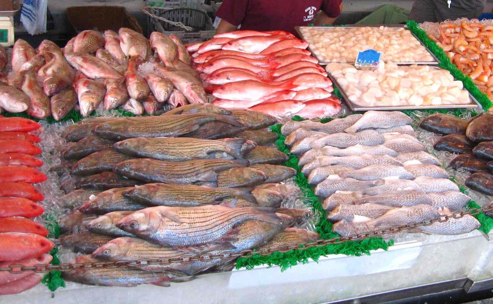 Diet Atkins Ikan