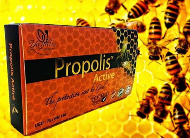 propolis active ubat buasir Merawat Buasir Yang Terkeluar