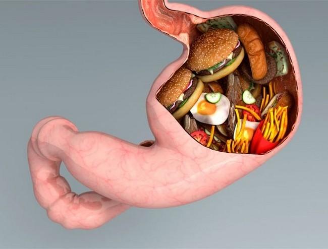 punca-kolesterol