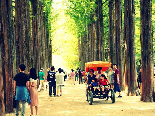 percutian-murah-korea-Pulau-Namiseom