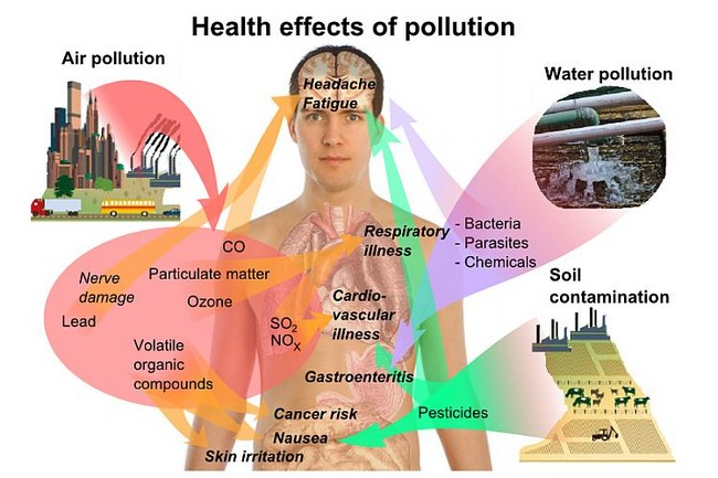 enviromental effects of air pollution and Environmental effects of air pollution and application of engineered methods to combat the problem ahmad ashfaq 1 and pratiksha sharma 2 1 assistant professor, faculty of engineering.
