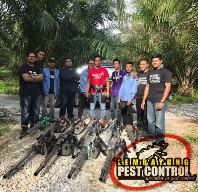 pasukan-pest-control-pakar