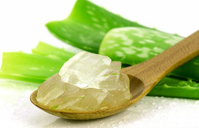 aloe vera cara hilangkan jerawat dan kulit kering