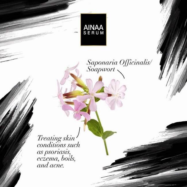 bunga orkid dalam ainaa serum untuk meremajakan kulit dengan cepat