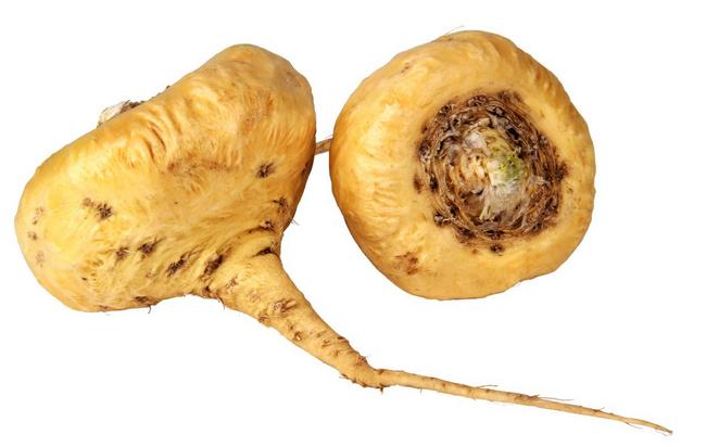 maca tumbuhan untuk tambah tenaga dalaman