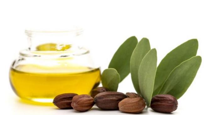 minyak jojoba bahan rawatan rambut hilangkan kelemumur