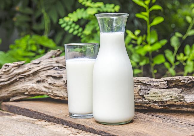 susu kambing dalam ya matin milk booster untuk tambahkan dan nutrisikan susu ibu