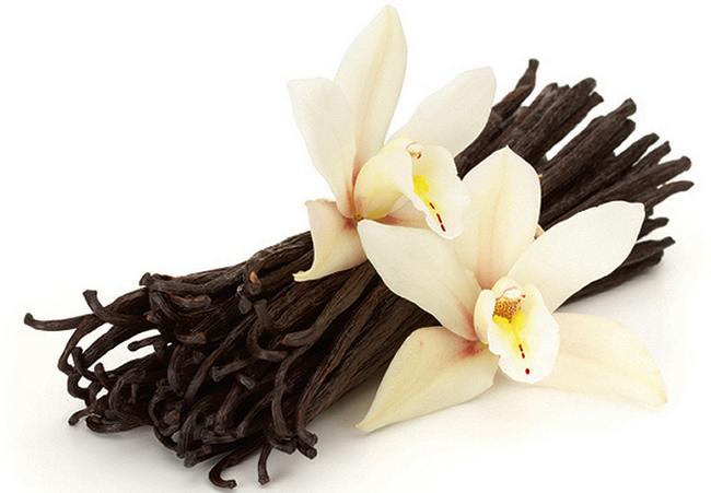 vanilla dalam ya matin milk booster untuk tambahkan dan nutrisikan susu ibu