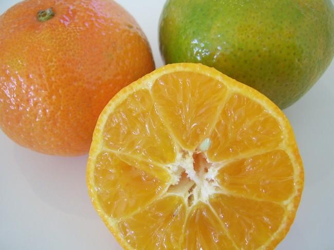 kandungan buah oren turunkan berat badan dengan cepat