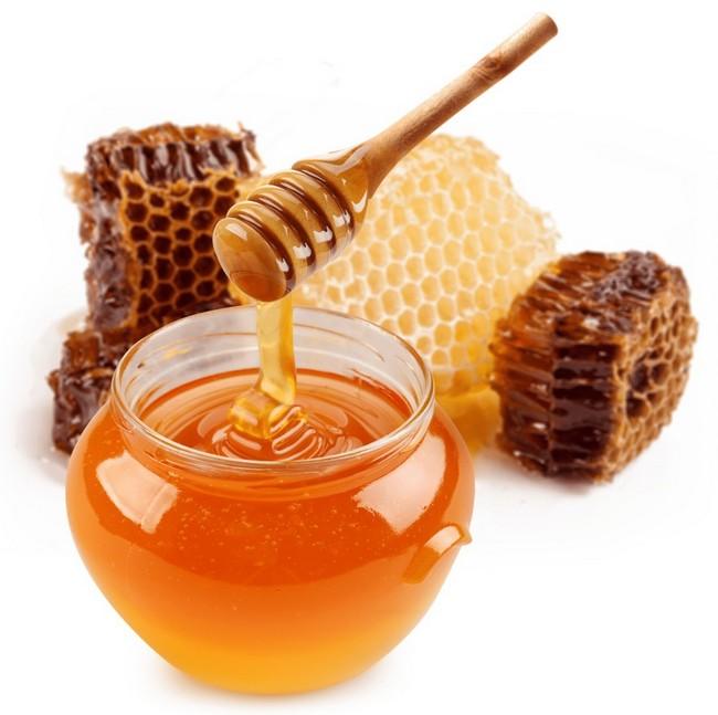 madu hasil utama dari perternakan madu kelulut asli