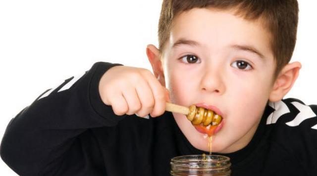 madu kelulut baik untuk anak