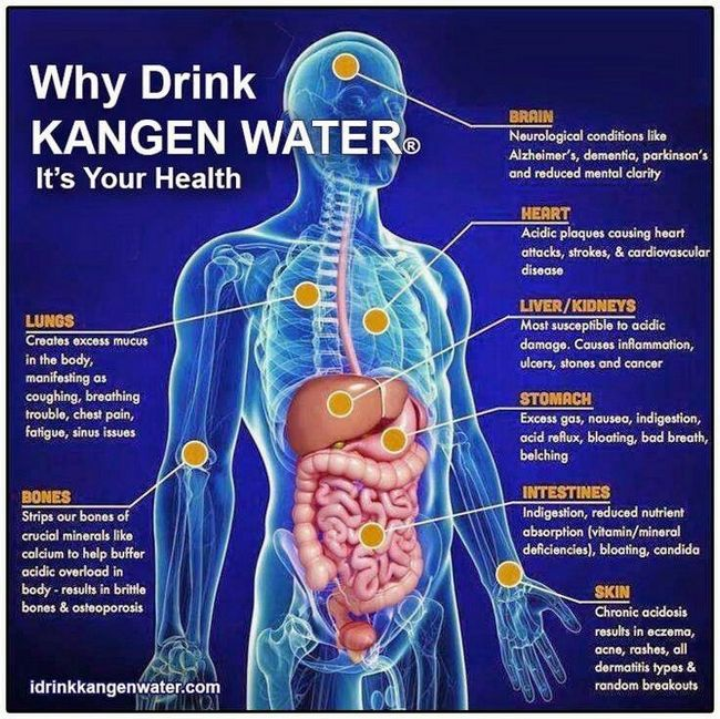 air kangen water membantu pencernaan badan