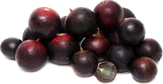 Anggur Muscadine penawar sakit kronik