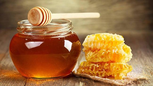 Madu Lebah Dan Aloe Vera Penawar Kepada Pelbagai Penyakit Kronik Sihat