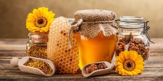 Madu Lebah Dan Aloe Vera Penawar Kepada Pelbagai Penyakit Kronik Bekas