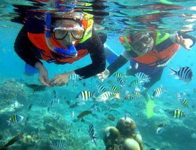 Pakej percutian ke Pulau Pangkor Selam