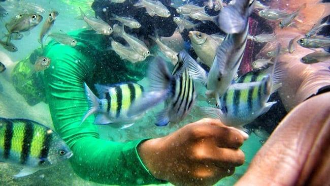 Pakej percutian ke Pulau Pangkor Pakej