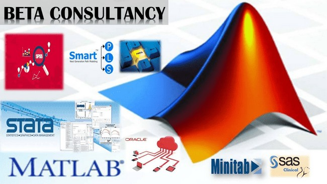 beta consultancy firma statistic