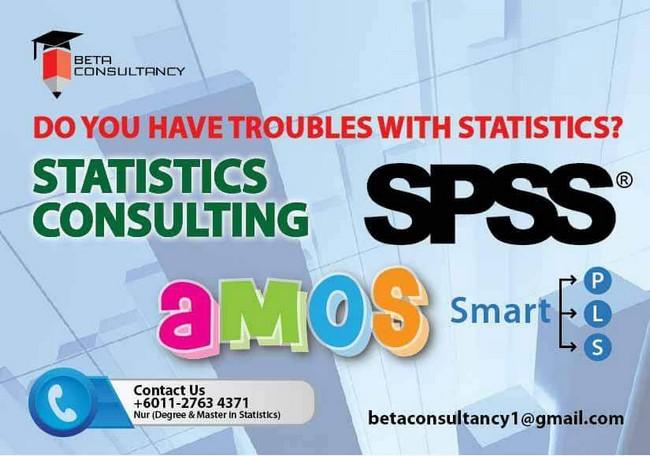 konsultan statistik data