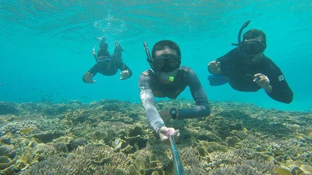 diving bersama arikiya redang village