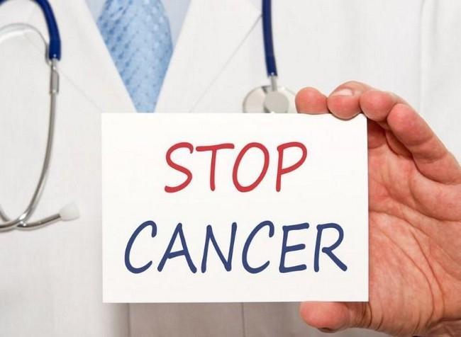 aprikot mencegah kanser